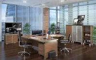 Офисная мебель для руководителя (Модель 22)
